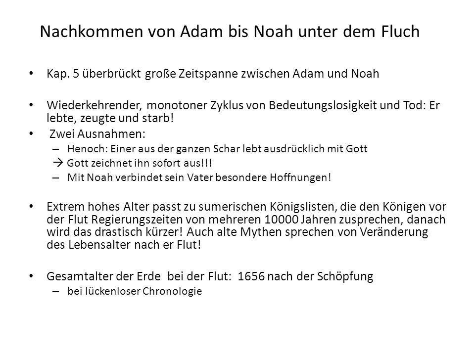 Nachkommen von Adam bis Noah unter dem Fluch Kap. 5 überbrückt große Zeitspanne zwischen Adam und Noah Wiederkehrender, monotoner Zyklus von Bedeutung