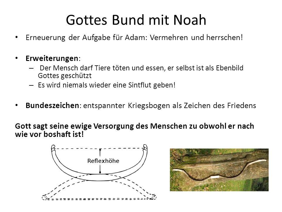 Gottes Bund mit Noah Erneuerung der Aufgabe für Adam: Vermehren und herrschen! Erweiterungen: – Der Mensch darf Tiere töten und essen, er selbst ist a