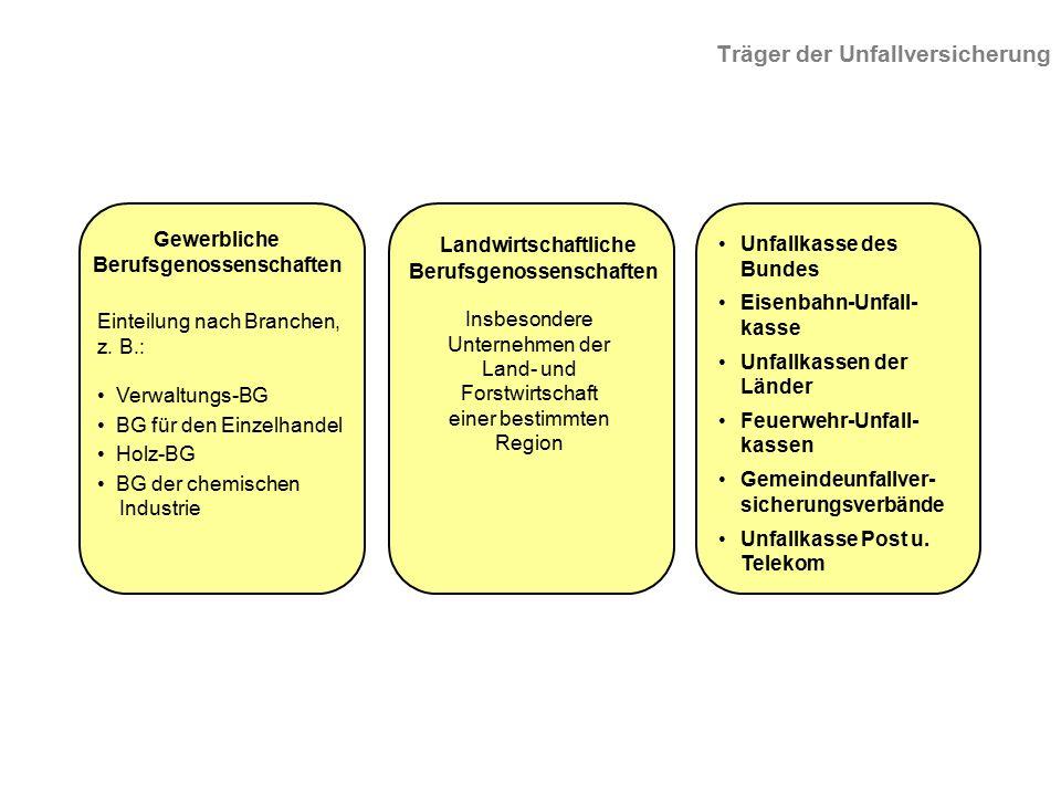 Einteilung nach Branchen, z. B.: Verwaltungs-BG BG für den Einzelhandel Holz-BG BG der chemischen Industrie Insbesondere Unternehmen der Land- und For