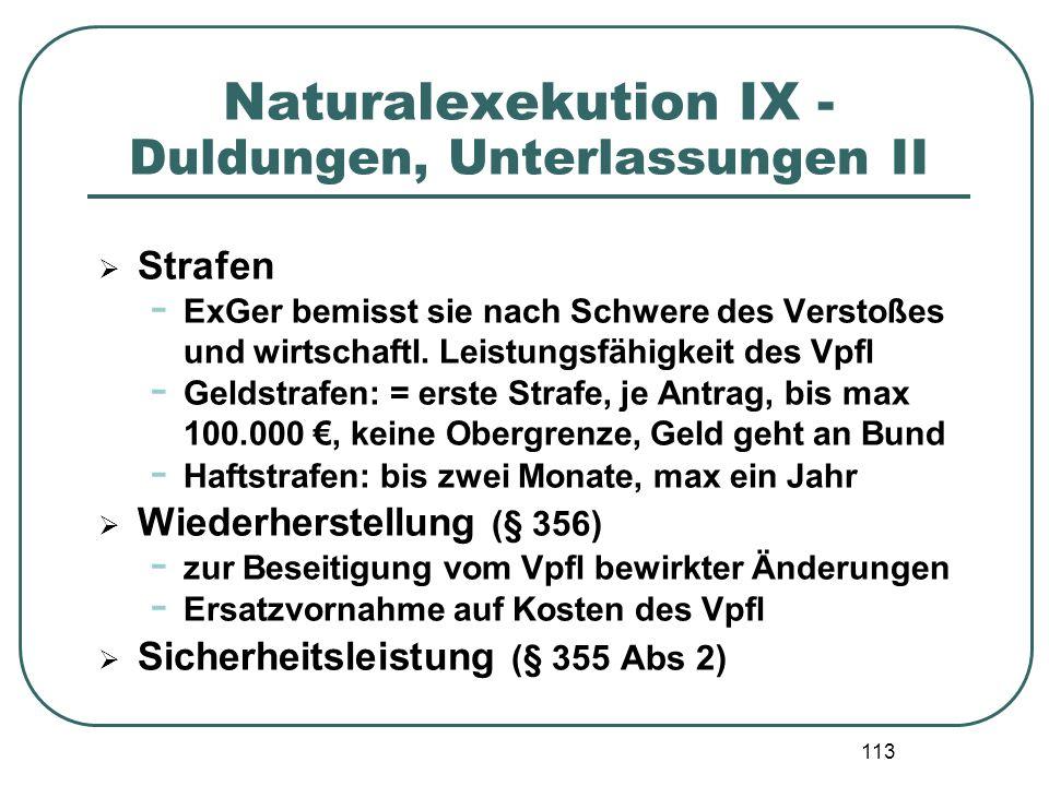 113 Naturalexekution IX - Duldungen, Unterlassungen II  Strafen - ExGer bemisst sie nach Schwere des Verstoßes und wirtschaftl. Leistungsfähigkeit de