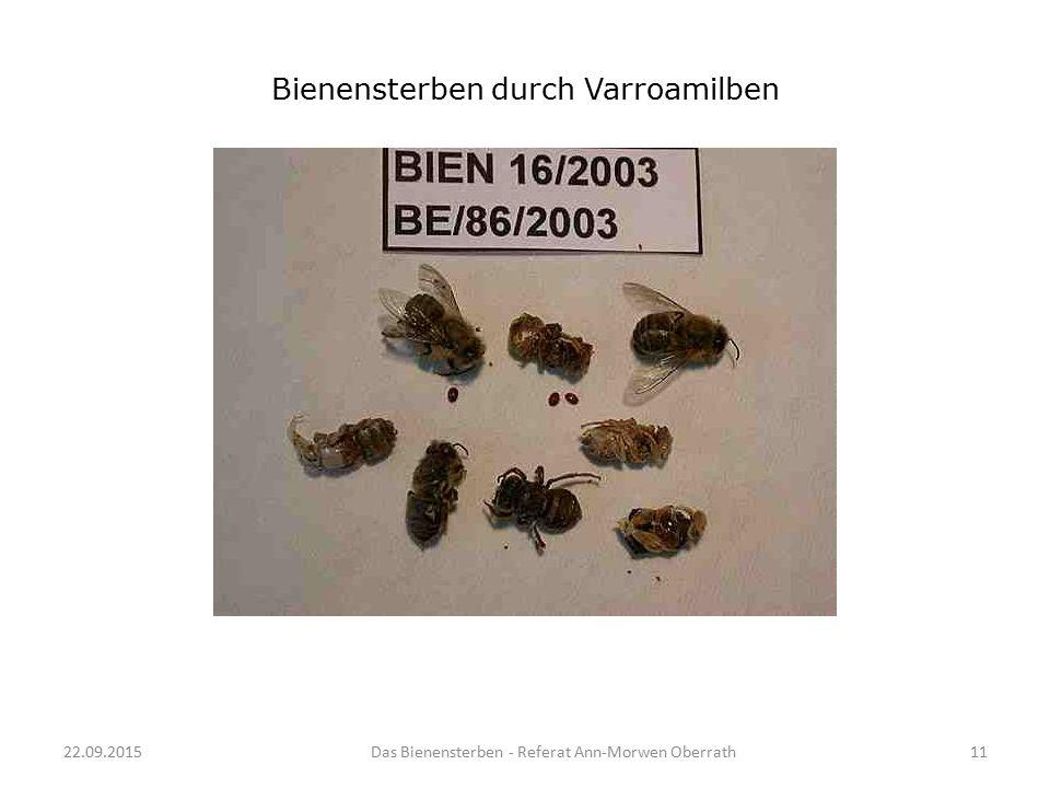 22.09.2015Das Bienensterben - Referat Ann-Morwen Oberrath11 Bienensterben durch Varroamilben