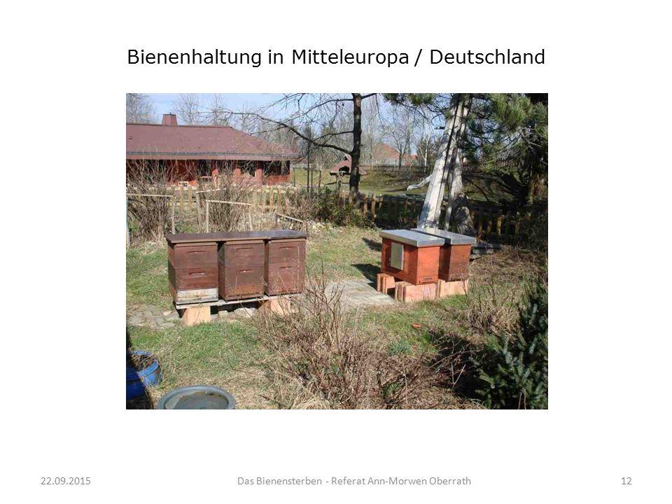 22.09.2015Das Bienensterben - Referat Ann-Morwen Oberrath12 Bienenhaltung in Mitteleuropa / Deutschland