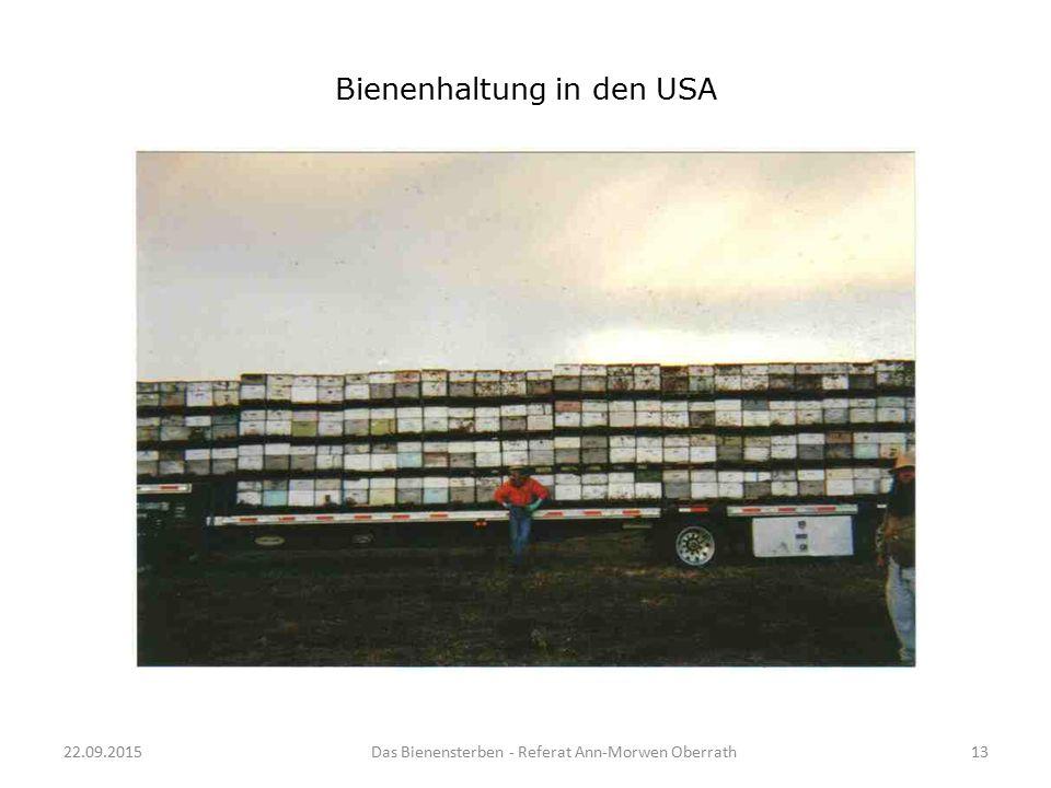 22.09.2015Das Bienensterben - Referat Ann-Morwen Oberrath13 Bienenhaltung in den USA