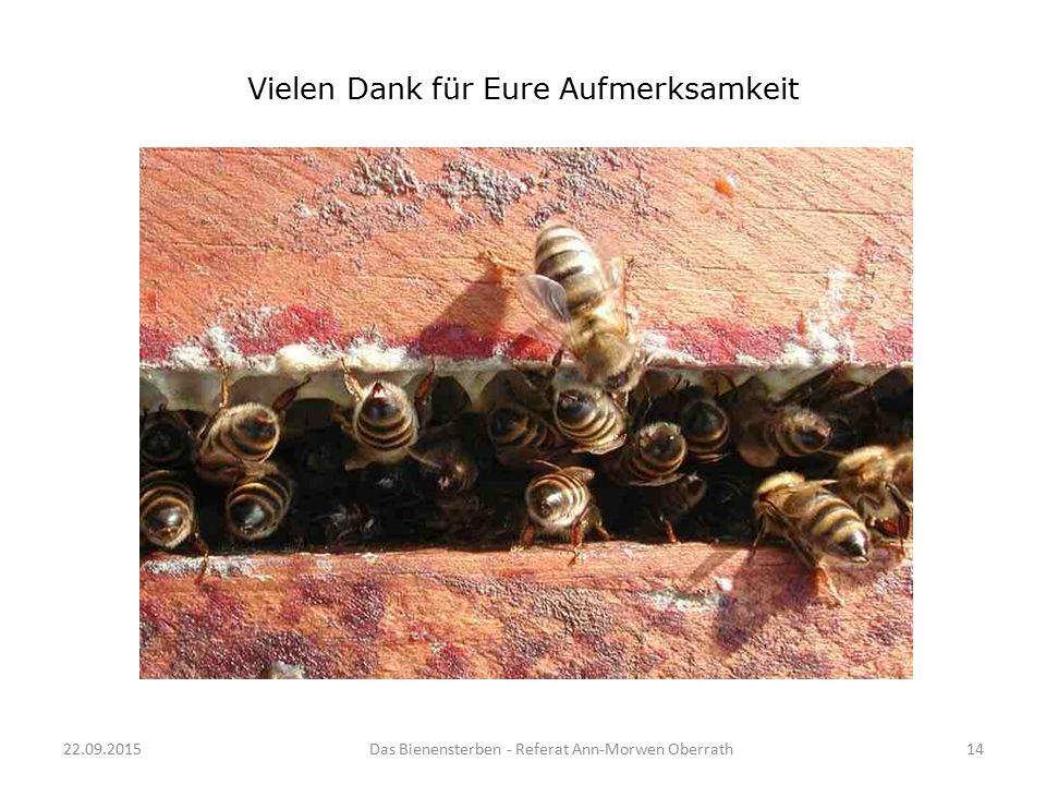 22.09.2015Das Bienensterben - Referat Ann-Morwen Oberrath14 Vielen Dank für Eure Aufmerksamkeit