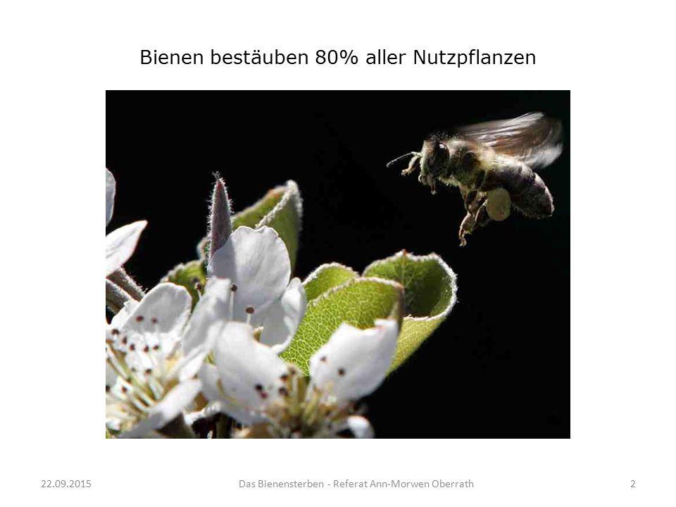 22.09.2015Das Bienensterben - Referat Ann-Morwen Oberrath2 Bienen bestäuben 80% aller Nutzpflanzen