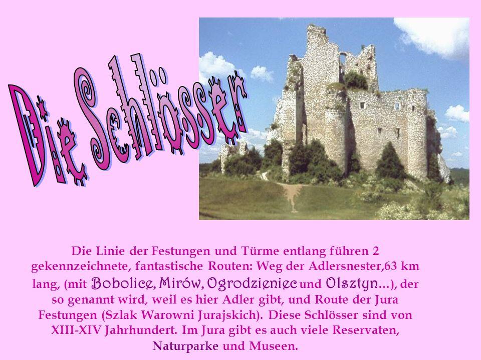 Die Linie der Festungen und Türme entlang führen 2 gekennzeichnete, fantastische Routen: Weg der Adlersnester,63 km lang, (mit Bobolice, Mirów, Ogrodzieniec und Olsztyn …), der so genannt wird, weil es hier Adler gibt, und Route der Jura Festungen (Szlak Warowni Jurajskich).
