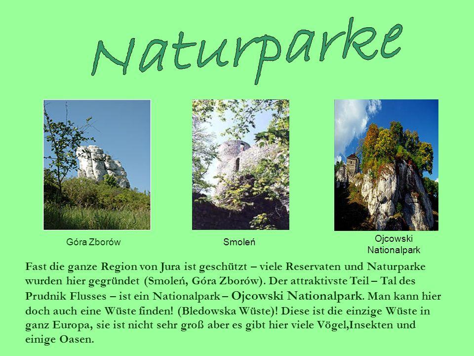 Fast die ganze Region von Jura ist geschützt – viele Reservaten und Naturparke wurden hier gegründet (Smoleń, Góra Zborów).