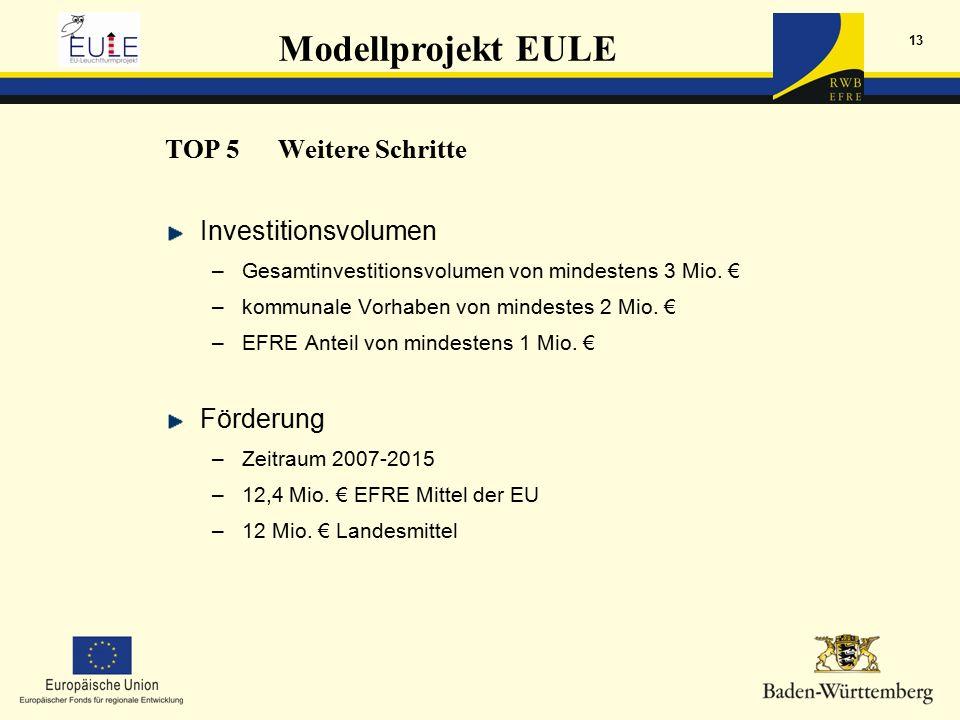 Modellprojekt EULE 13 Investitionsvolumen –Gesamtinvestitionsvolumen von mindestens 3 Mio.