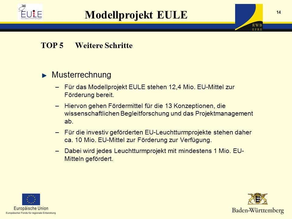 Modellprojekt EULE 14 Musterrechnung –Für das Modellprojekt EULE stehen 12,4 Mio.