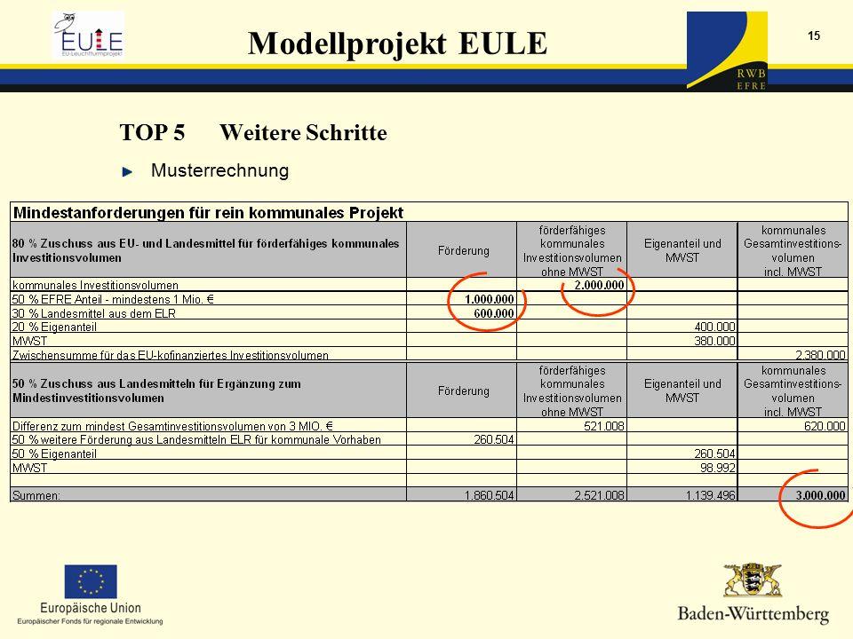 Modellprojekt EULE 15 Musterrechnung TOP 5Weitere Schritte