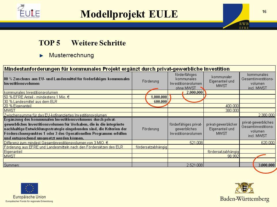Modellprojekt EULE 16 Musterrechnung TOP 5Weitere Schritte