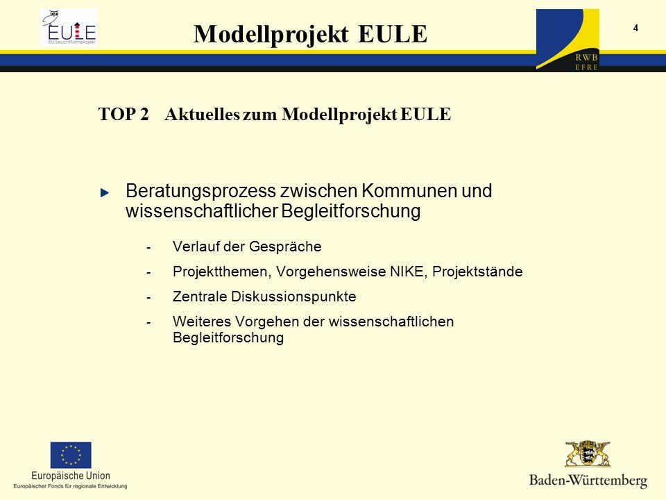 Modellprojekt EULE 4 TOP 2Aktuelles zum Modellprojekt EULE Beratungsprozess zwischen Kommunen und wissenschaftlicher Begleitforschung - Verlauf der Gespräche - Projektthemen, Vorgehensweise NIKE, Projektstände - Zentrale Diskussionspunkte - Weiteres Vorgehen der wissenschaftlichen Begleitforschung