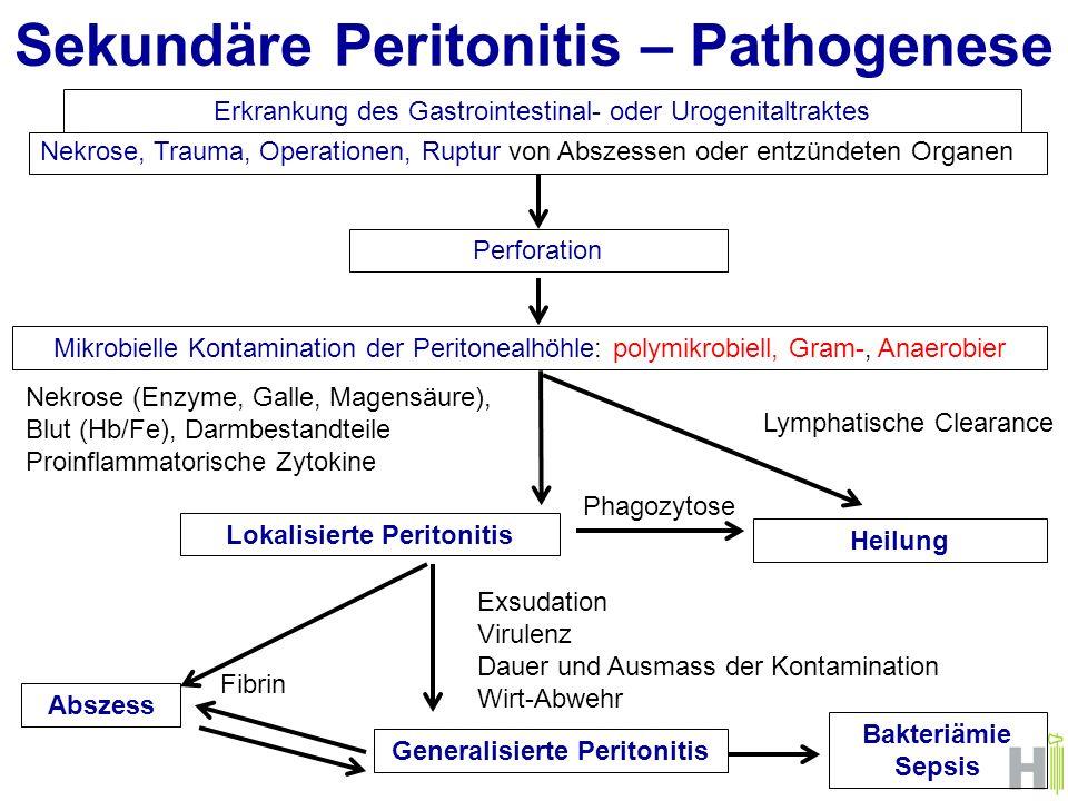 Sekundäre Peritonitis – Pathogenese Nekrose, Trauma, Operationen, Ruptur von Abszessen oder entzündeten Organen Erkrankung des Gastrointestinal- oder