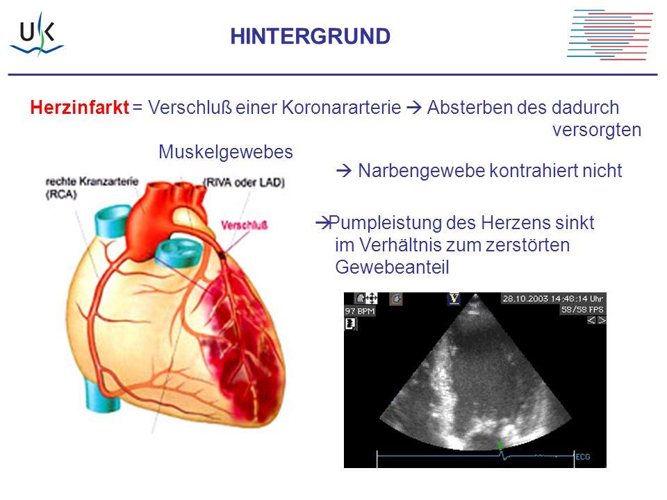 HINTERGRUND Herzinfarkt = Verschluß einer Koronararterie  Absterben des dadurch versorgten Muskelgewebes  Narbengewebe kontrahiert nicht  Pumpleist