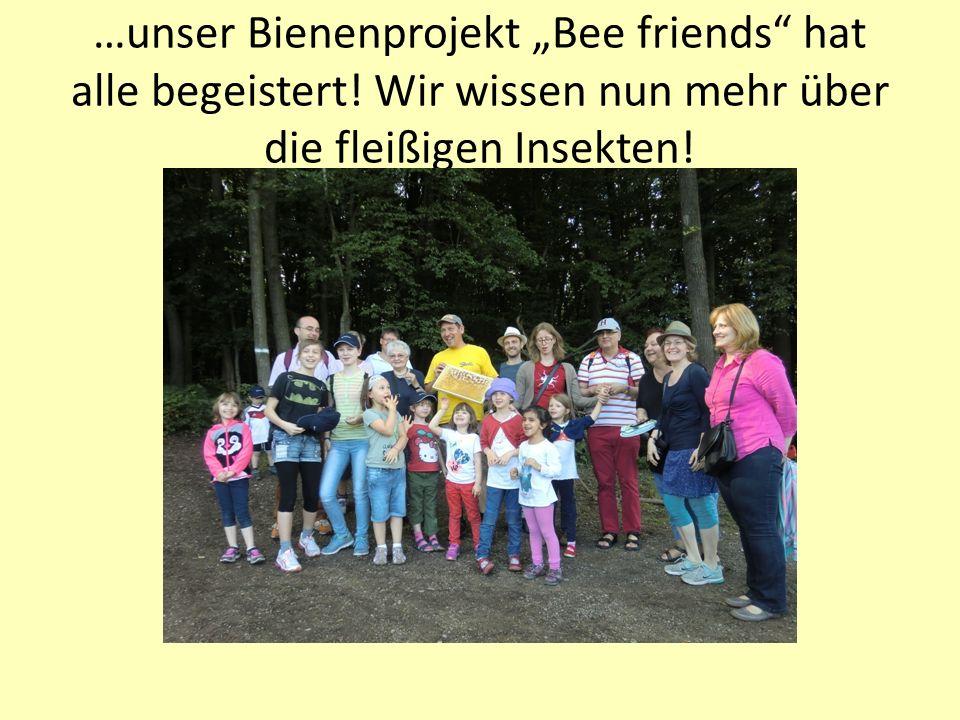 """…unser Bienenprojekt """"Bee friends"""" hat alle begeistert! Wir wissen nun mehr über die fleißigen Insekten!"""