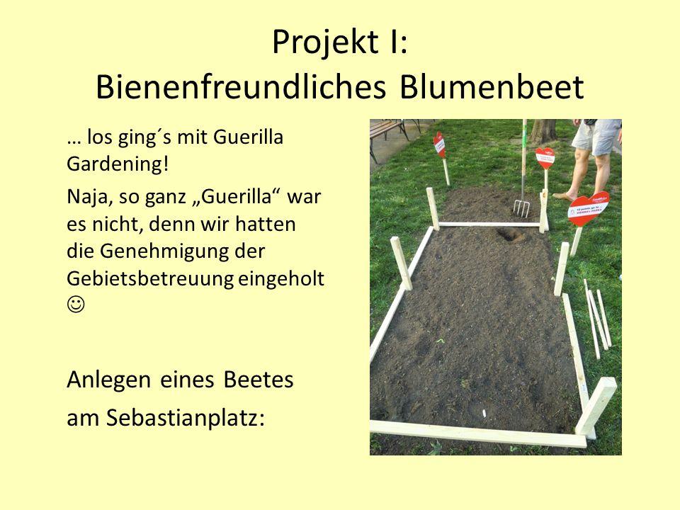Projekt I: Bienenfreundliches Blumenbeet … los ging´s mit Guerilla Gardening.