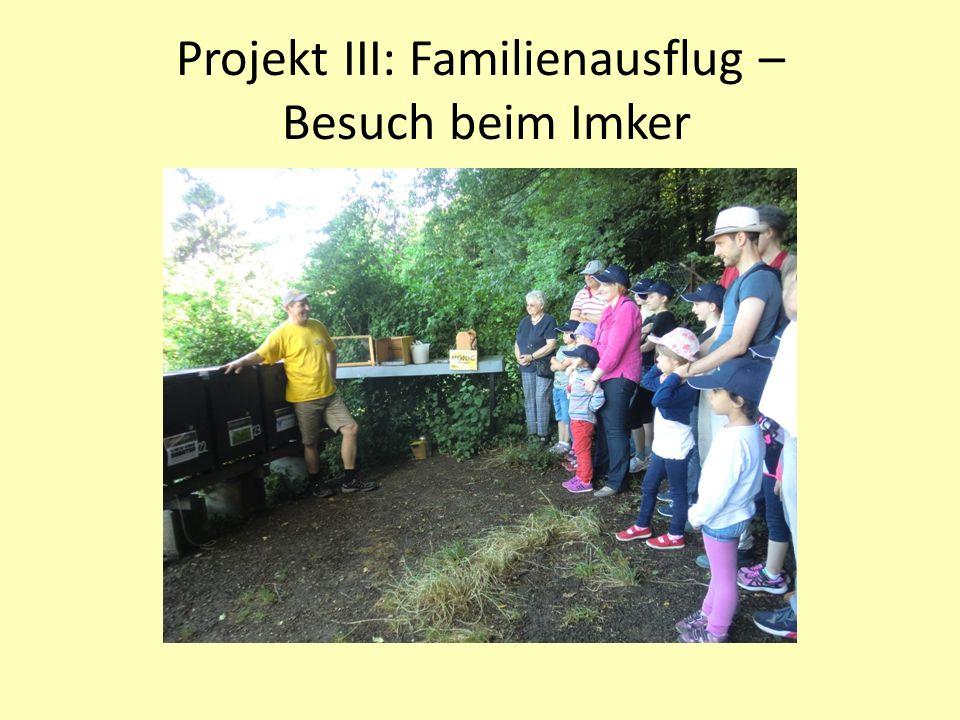 Projekt III: Familienausflug – Besuch beim Imker