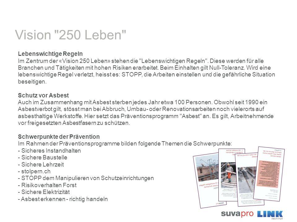 Vision 250 Leben Lebenswichtige Regeln Im Zentrum der «Vision 250 Leben» stehen die Lebenswichtigen Regeln .