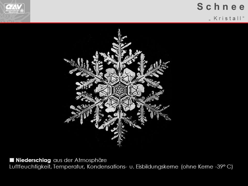 Walter W.Ablagerung am Boden Schneekristalle / -körner inkl.