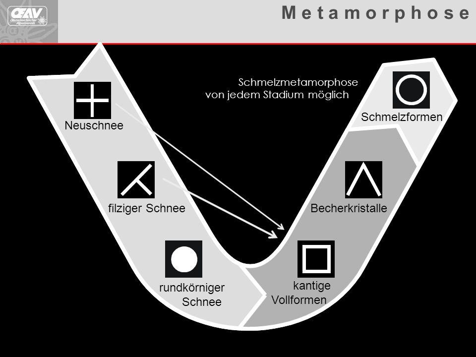 Metamorphosen Übersicht Neuschnee filziger Schnee rundkörniger Schnee kantige Vollformen Becherkristalle Schmelzformen Abbauende Metamorphose Aufbauen