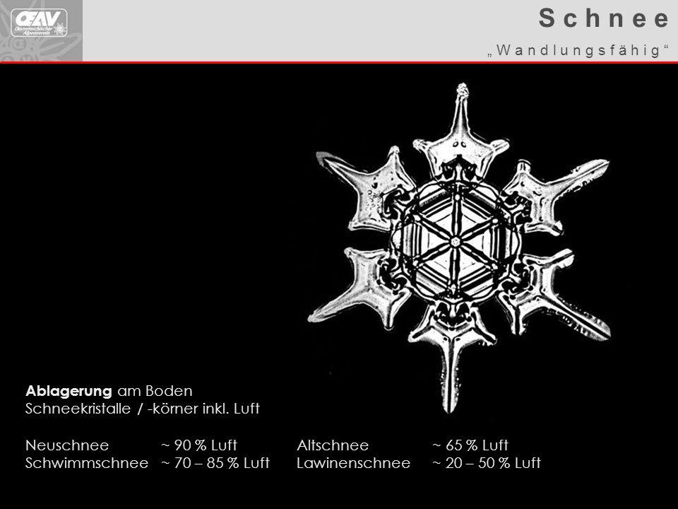 Walter W. Ablagerung am Boden Schneekristalle / -körner inkl. Luft Neuschnee~ 90 % LuftAltschnee~ 65 % Luft Schwimmschnee~ 70 – 85 % LuftLawinenschnee