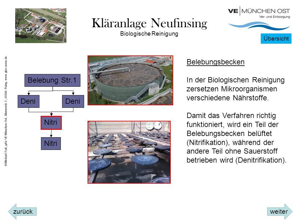 Kläranlage Neufinsing Belebung Str.1 Deni Nitri Biologische Reinigung Belebungsbecken In der Biologischen Reinigung zersetzen Mikroorganismen verschiedene Nährstoffe.