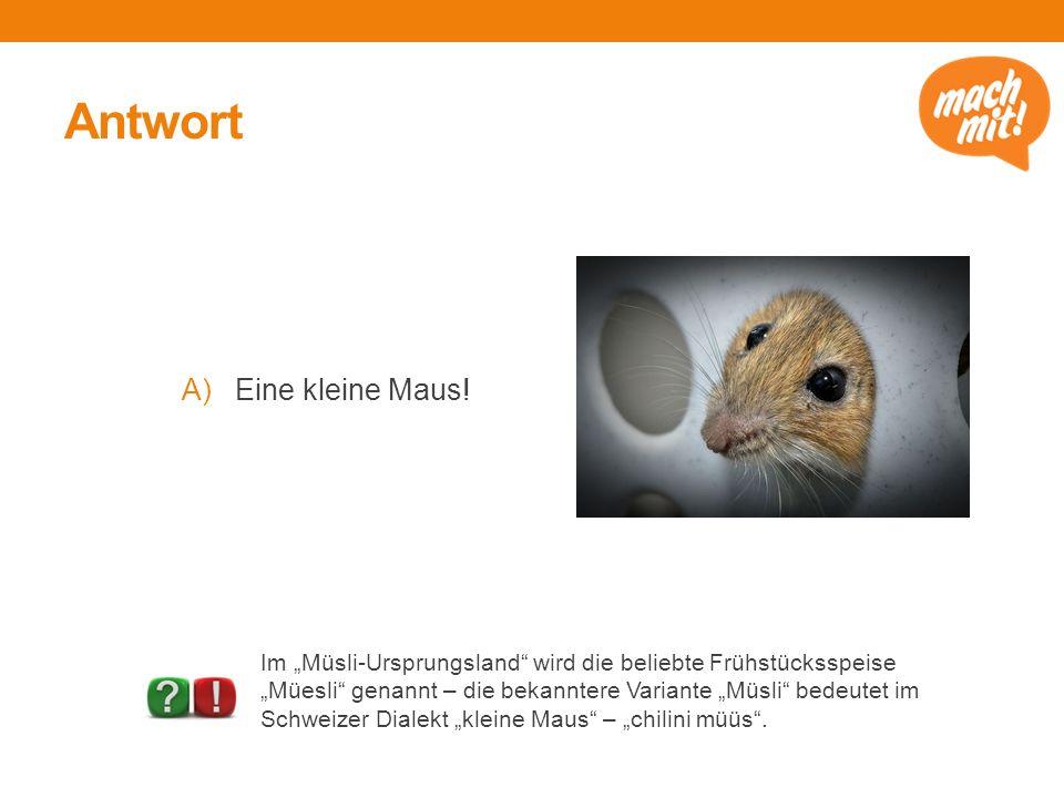 """Antwort A)Eine kleine Maus! Im """"Müsli-Ursprungsland"""" wird die beliebte Frühstücksspeise """"Müesli"""" genannt – die bekanntere Variante """"Müsli"""" bedeutet im"""