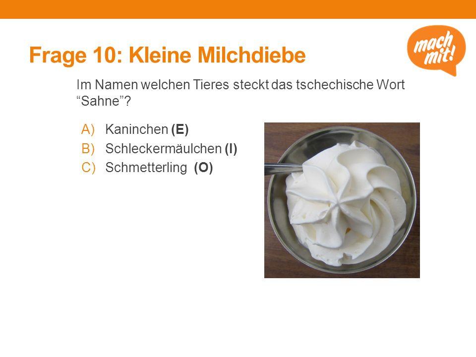 """Frage 10: Kleine Milchdiebe Im Namen welchen Tieres steckt das tschechische Wort """"Sahne""""? A)Kaninchen (E) B)Schleckermäulchen (I) C)Schmetterling (O)"""