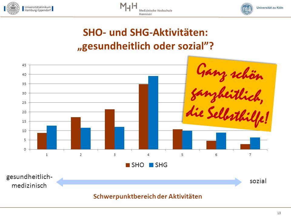 """SHO- und SHG-Aktivitäten: """"gesundheitlich oder sozial""""? 13 Schwerpunktbereich der Aktivitäten gesundheitlich- medizinisch sozial Ganz schön ganzheitli"""