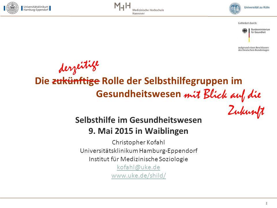 """Inanspruchnahme externer finanzieller Hilfen (""""ja in %) 23 Hier ist auch der Hamburger SHG-Topf <-- dabei, also auch noch Krankenkasse!"""