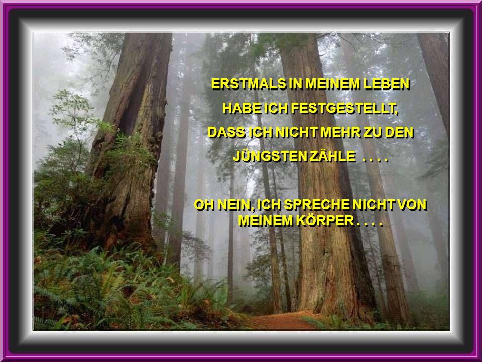 ERSTMALS IN MEINEM LEBEN HABE ICH FESTGESTELLT, DASS ICH NICHT MEHR ZU DEN JÜNGSTEN ZÄHLE....