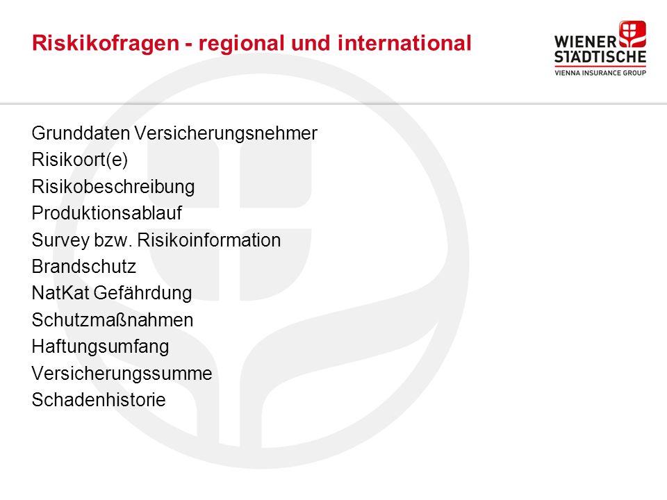 Riskikofragen - regional und international Grunddaten Versicherungsnehmer Risikoort(e) Risikobeschreibung Produktionsablauf Survey bzw.