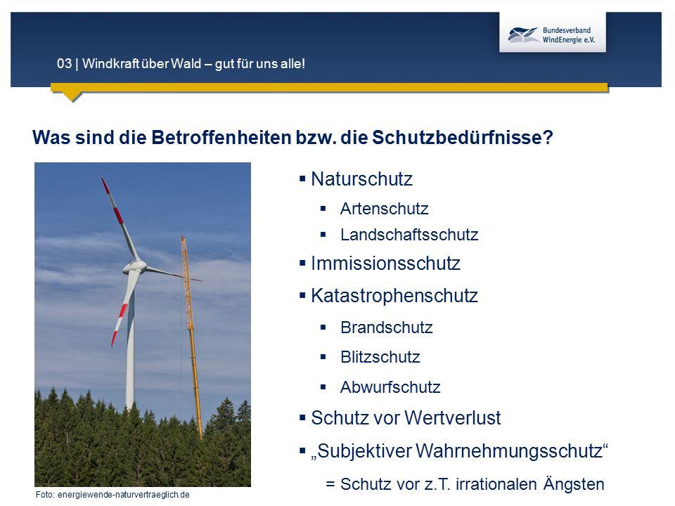 03 | Windkraft über Wald – gut für uns alle! Was sind die Betroffenheiten bzw. die Schutzbedürfnisse?  Naturschutz  Artenschutz  Landschaftsschutz