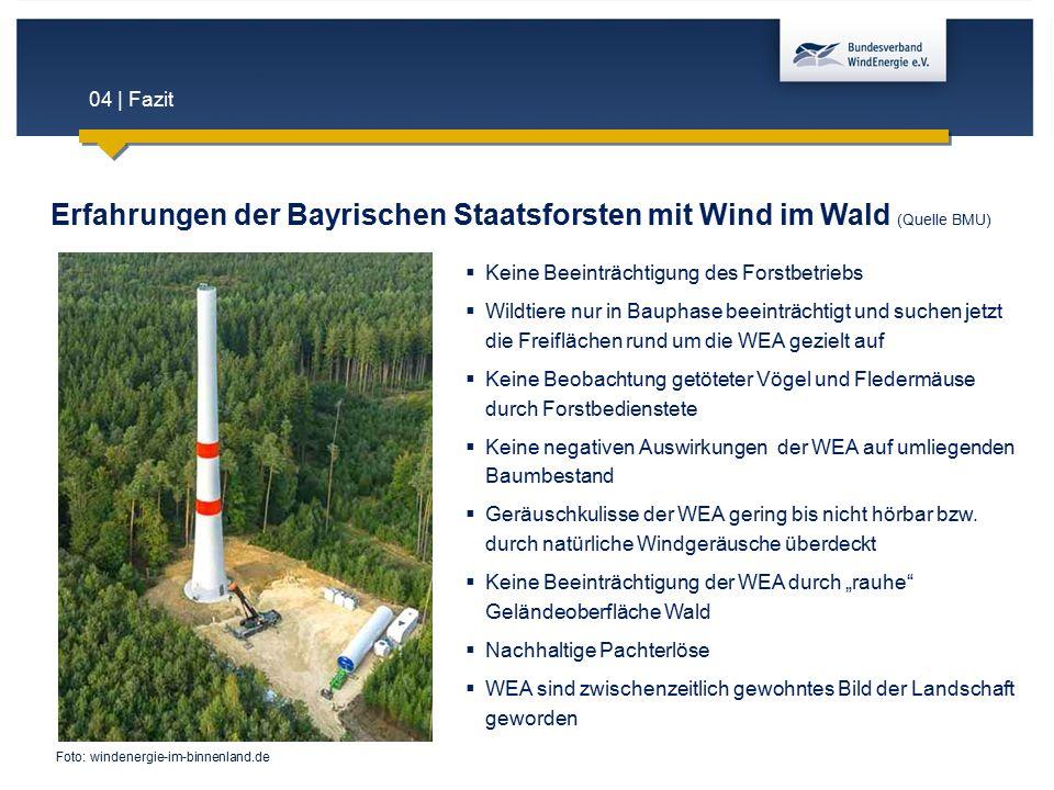 04 | Fazit Erfahrungen der Bayrischen Staatsforsten mit Wind im Wald (Quelle BMU)  Keine Beeinträchtigung des Forstbetriebs  Wildtiere nur in Baupha