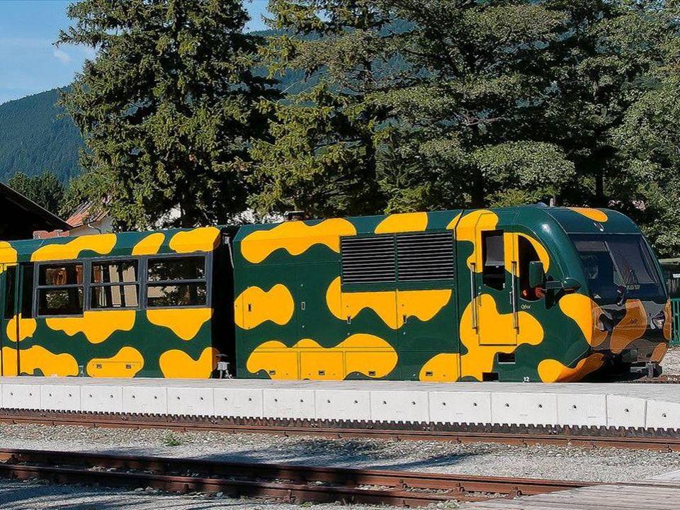 AlsSalamander werden die seit 1999 auf der Schneebergbahn in NÖ ein- gesetzten Zahnradbahn-Dieseltriebwagen bezeichnet.
