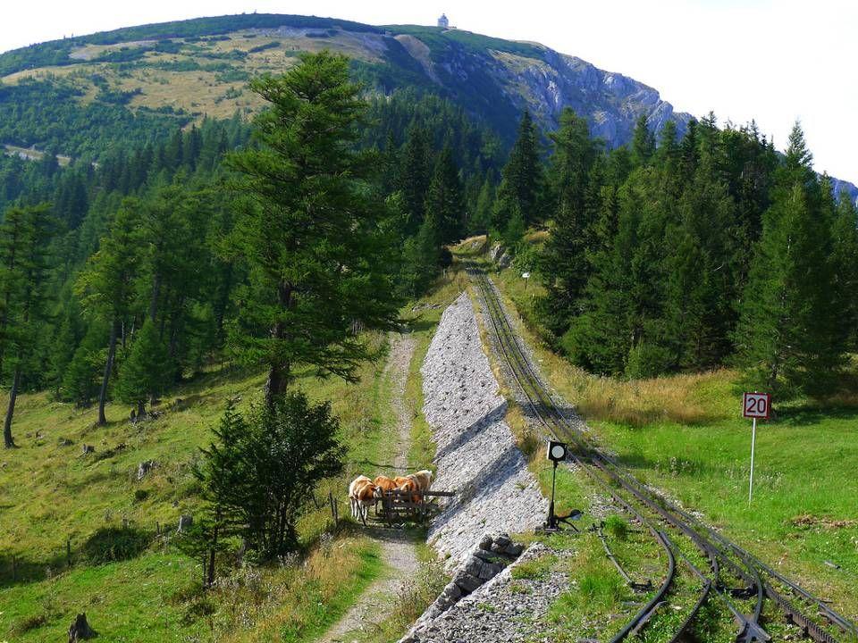 Blick vom Waxriegel zur Berghütte Damböckhaus und zum Hochschneeberg Klosterwappen 2076 m Kaiserstein 2061 m