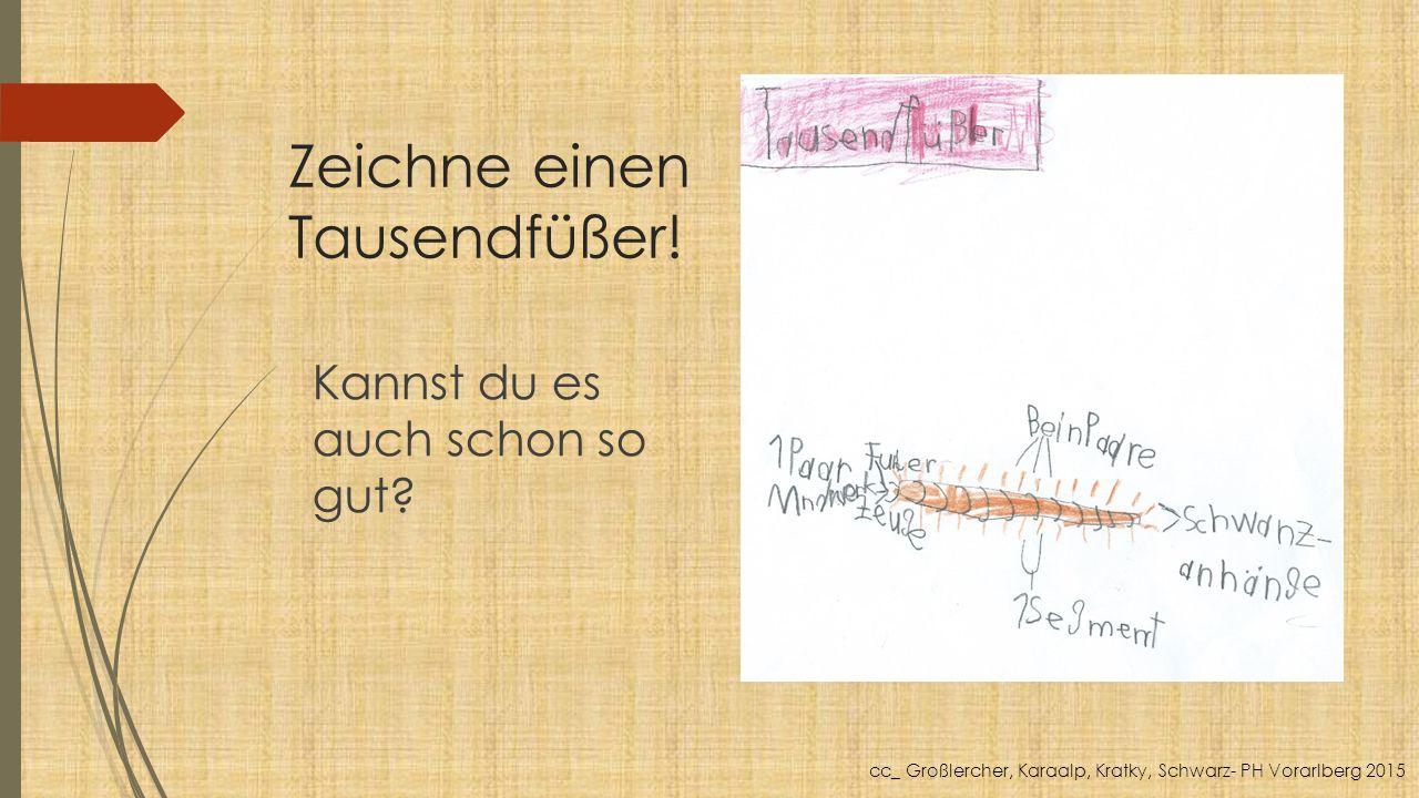 Zeichne einen Tausendfüßer! Kannst du es auch schon so gut? cc_ Großlercher, Karaalp, Kratky, Schwarz- PH Vorarlberg 2015