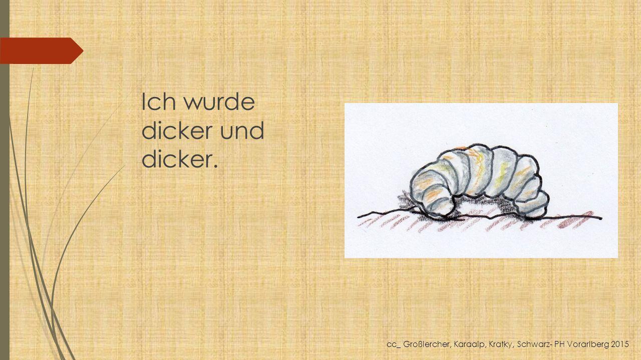 Ich wurde dicker und dicker. cc_ Großlercher, Karaalp, Kratky, Schwarz- PH Vorarlberg 2015