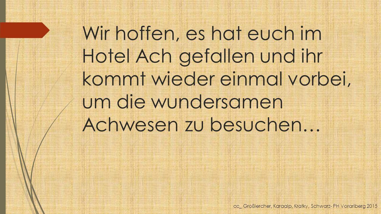 Wir hoffen, es hat euch im Hotel Ach gefallen und ihr kommt wieder einmal vorbei, um die wundersamen Achwesen zu besuchen… cc_ Großlercher, Karaalp, Kratky, Schwarz- PH Vorarlberg 2015