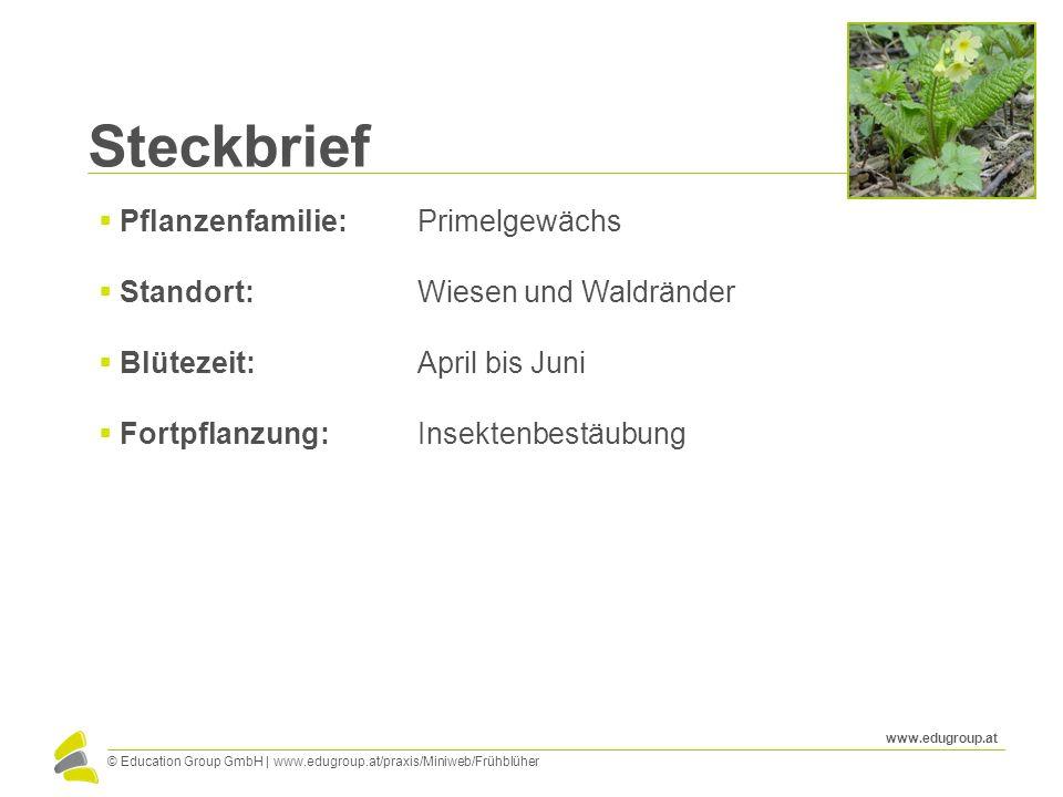© Education Group GmbH | www.edugroup.at/praxis/Miniweb/Frühblüher www.edugroup.at Steckbrief  Pflanzenfamilie: Primelgewächs  Standort: Wiesen und
