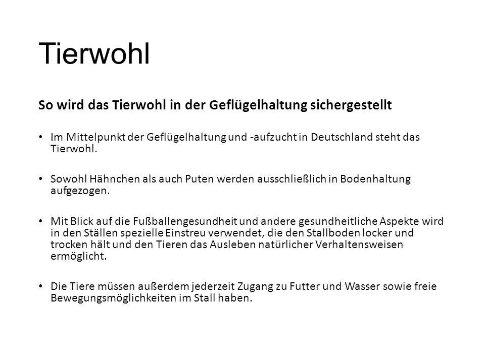 Tierwohl So wird das Tierwohl in der Geflügelhaltung sichergestellt Im Mittelpunkt der Geflügelhaltung und -aufzucht in Deutschland steht das Tierwohl.