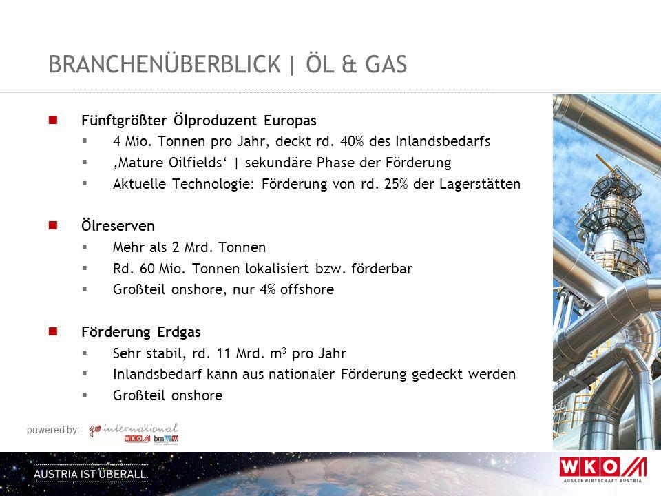 powered by: BRANCHENÜBERBLICK | ÖL & GAS Fünftgrößter Ölproduzent Europas  4 Mio. Tonnen pro Jahr, deckt rd. 40% des Inlandsbedarfs  'Mature Oilfiel