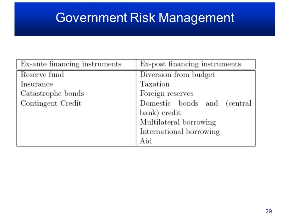 Government Risk Management 29