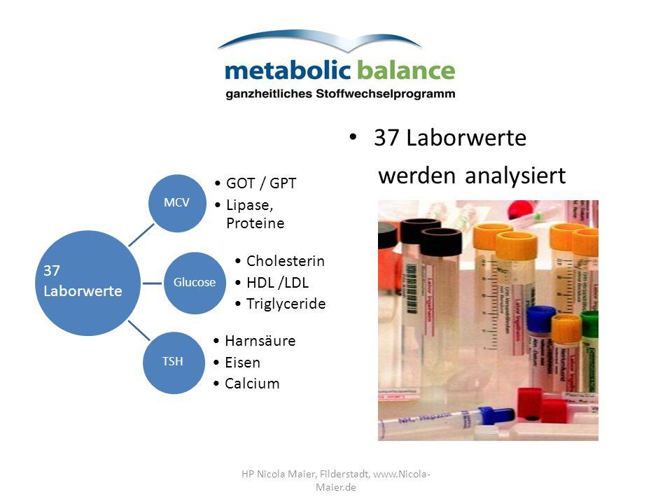 37 Laborwerte werden analysiert MCV GOT / GPT Lipase, Proteine Glucose Cholesterin HDL /LDL Triglyceride TSH Harnsäure Eisen Calcium 37 Laborwerte HP Nicola Maier, Filderstadt, www.Nicola- Maier.de