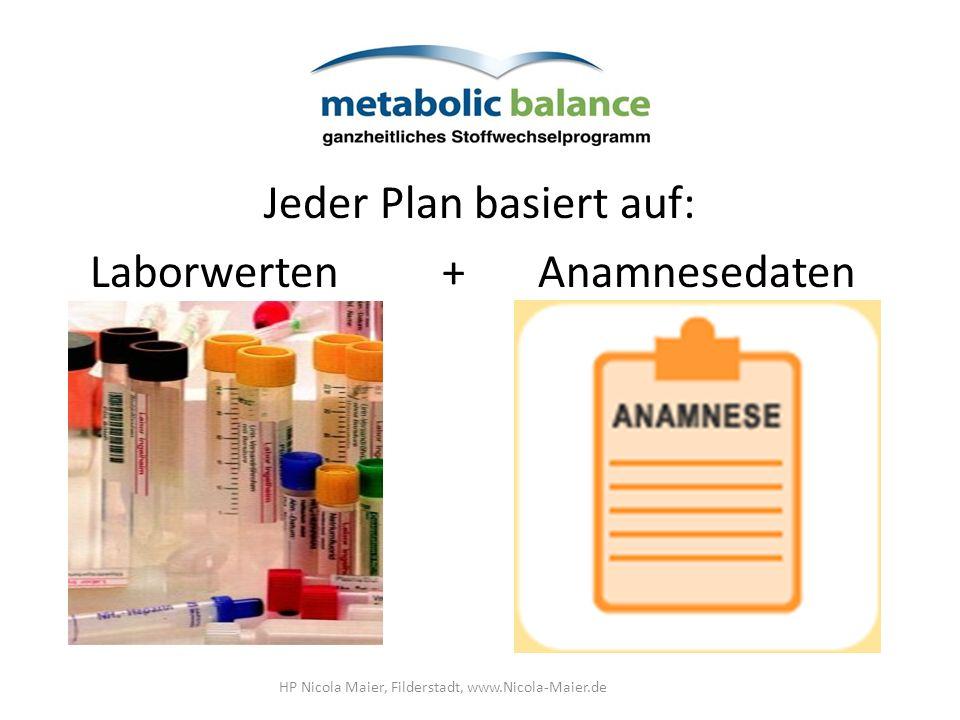 Jeder Plan basiert auf: Laborwerten+Anamnesedaten HP Nicola Maier, Filderstadt, www.Nicola-Maier.de
