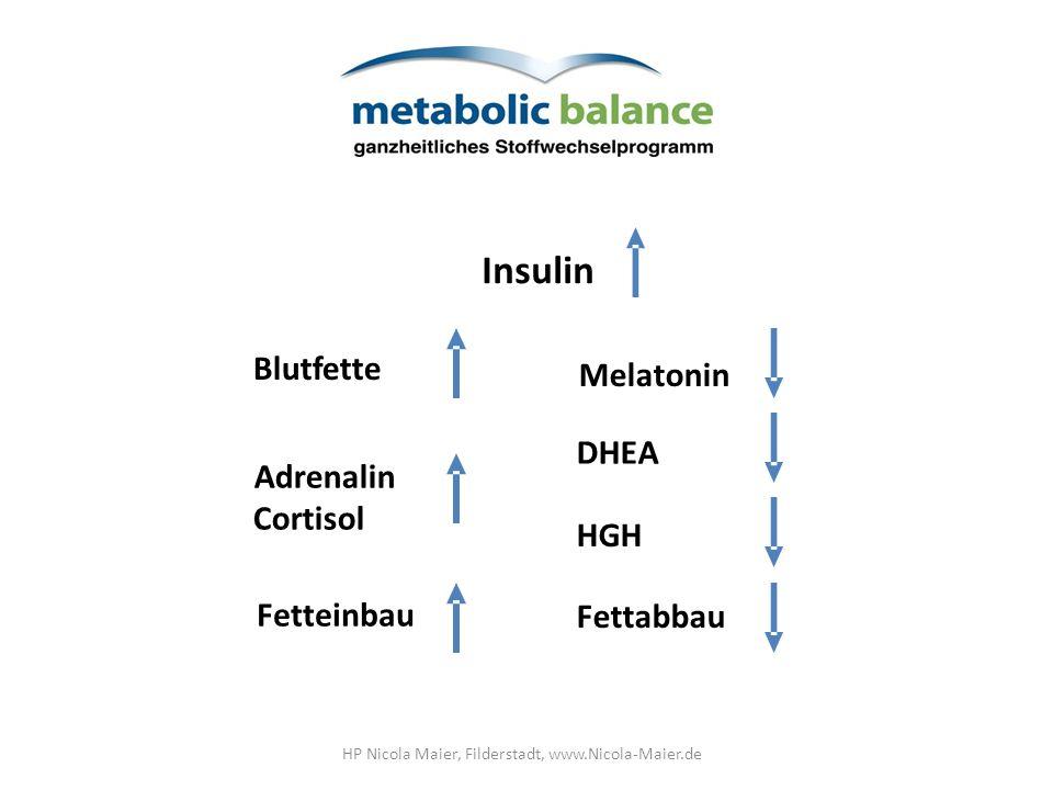 2,5 Std. 5 Std. Nahrungsaufnahme Heißhunger Blutzucker Seruminsulin