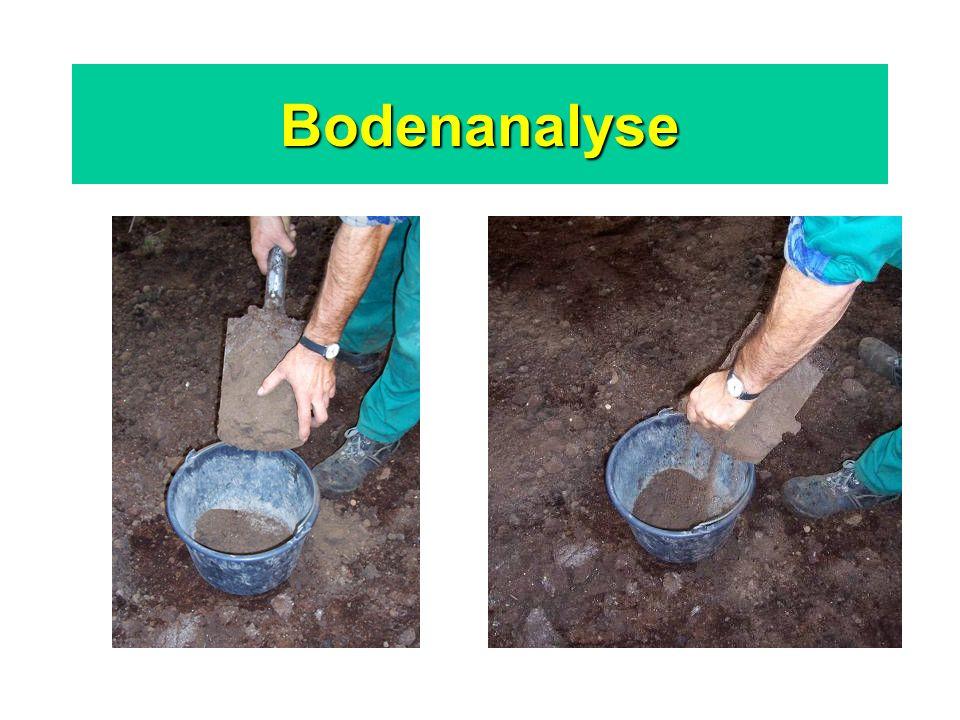Bodenanalyse