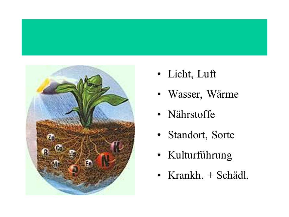 Licht, Luft Wasser, Wärme Nährstoffe Standort, Sorte Kulturführung Krankh. + Schädl.