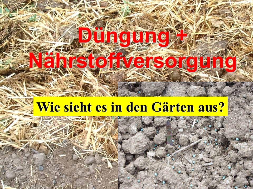 Düngung + Nährstoffversorgung Wie sieht es in den Gärten aus?