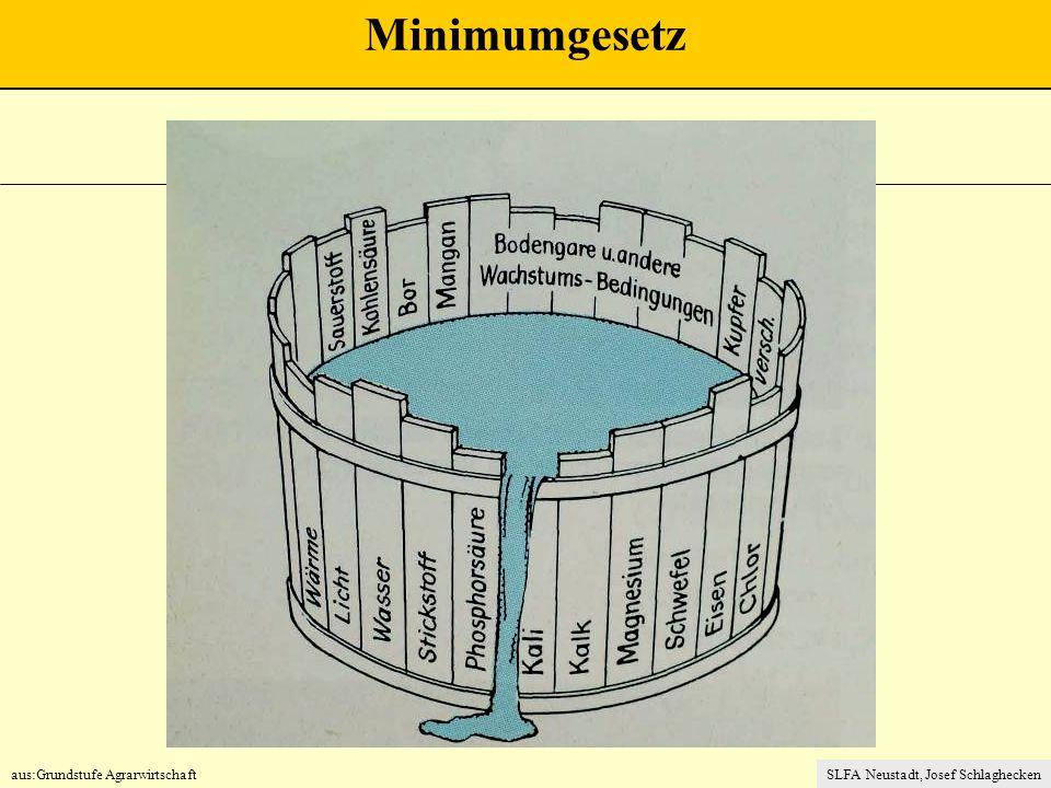 aus:Grundstufe AgrarwirtschaftSLFA Neustadt, Josef Schlaghecken Minimumgesetz